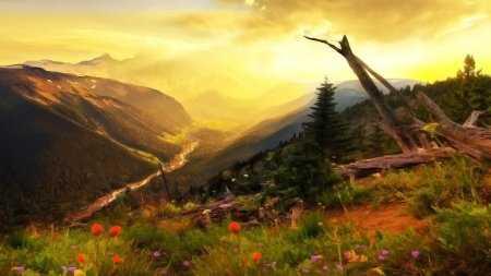 Doğa resimleri duvar kağıtları 15