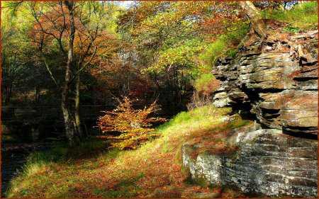 Doğa Resimleri - Duvar Kağıtları 13