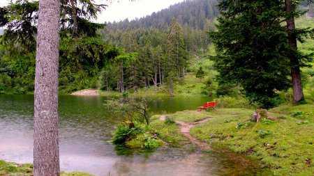Masaüstü Duvar Kağıtları - Doğa Resimleri HD 2