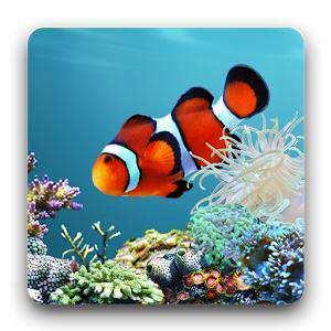 aniPet Aquarium LiveWallpaper - Android Akvaryum Canlı Duvar Kağıdı