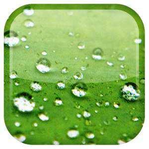 Galaxy S3 Yağmur Damlası Canlı Duvar Kağıdı