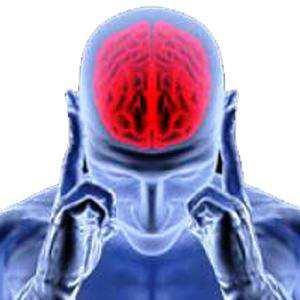 Telefonda Pratik Beyin Egzersizleri Yapma Apk İndir