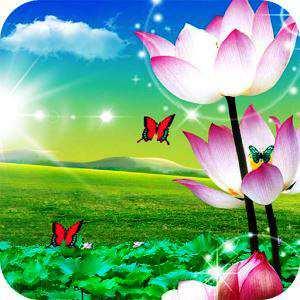 Lotus Canlı Duvar Kağıdı