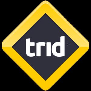Trid - Mantık Oyunu